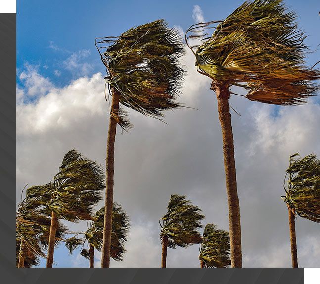 Wind Mitigation Homeowner's Insurance | Roof Smart Florida Roofing Company