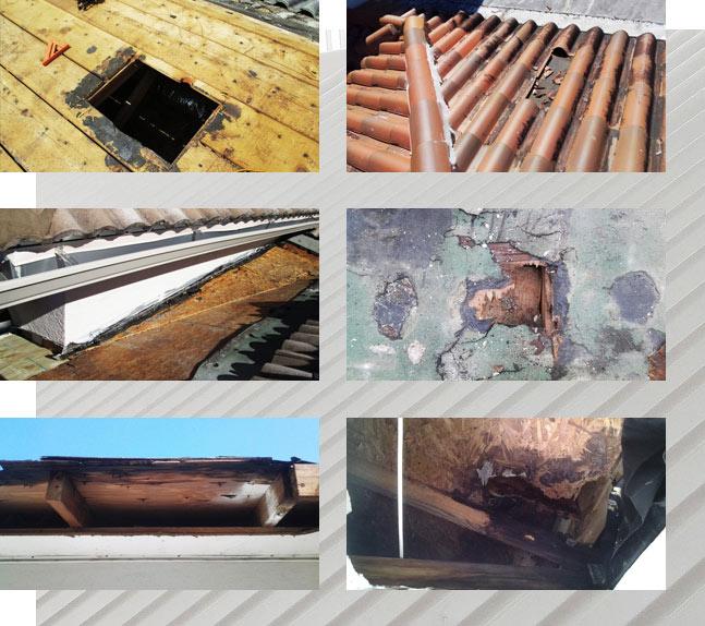 Storm Damage Roof Repair in progress   Roof Smart of SWFL